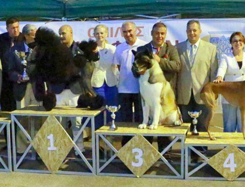Korinthos Kennel Club NDS 23/07/2016